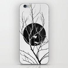Dry iPhone & iPod Skin