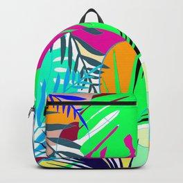 Naturshka 74 Backpack