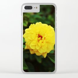 Autumn Yellow Rose Clear iPhone Case