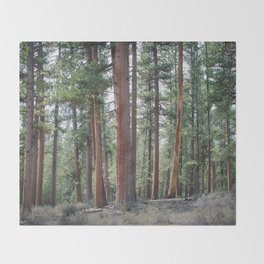 Ponderosa Pine Forest Throw Blanket