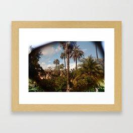 TROPICAL SUNGLASS Framed Art Print