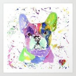 French bulldog , frenchie, toy bulldog, Bouledogue francais Art Print