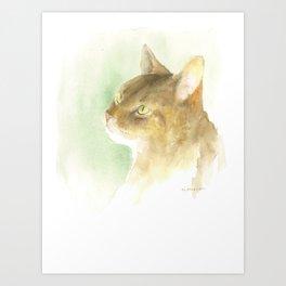dreaming - abyssinian cat Art Print
