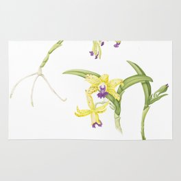 3 Stem flowering yellow and purple cattleya orchid Rug