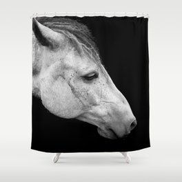 Casper | Horse Photography | Animal Art | Minimalism | Nature | black-and-white Shower Curtain