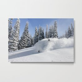 Blue Bird Pow Day Metal Print
