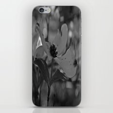 B&W Dogwood iPhone & iPod Skin