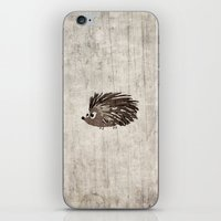 hedgehog iPhone & iPod Skins featuring Hedgehog by Mr and Mrs Quirynen