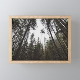 Pacific Northwest Forest Framed Mini Art Print