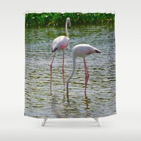 flamingos Shower Curtains featuring Flamingos by CrismanArt