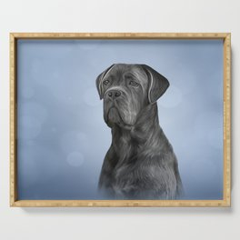 Drawing dog Cane Corso - Italian Mastiff Serving Tray