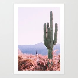 Warm Desert Art Print