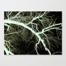 shock Canvas Print