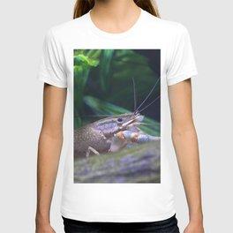 The crayfish T-shirt