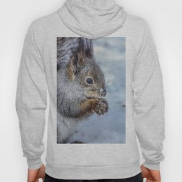 Squirrel Hoody