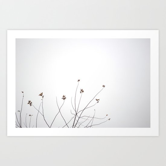Like Vines  Art Print