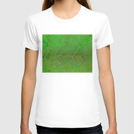 Green Leaf With Veins T-shirt