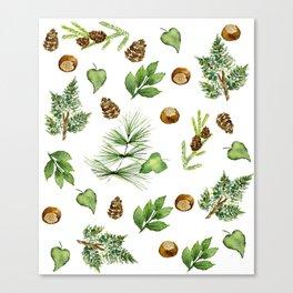 Chestnut Pines Canvas Print