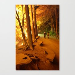 The Golden Path II Canvas Print