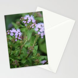 September Wildflowers Stationery Cards