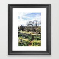 Trail into the Woods Framed Art Print