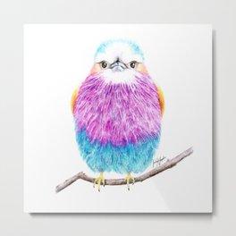 Lilac Breasted Roller Bird Illustration Metal Print