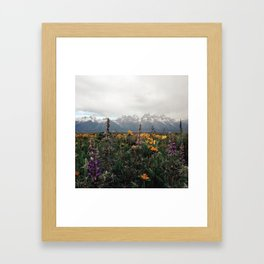 Wildflowers and Mountains - Summer in the Tetons Framed Art Print