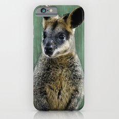 Curious Wally-Wallaby iPhone 6s Slim Case