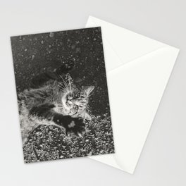 Cat Paws and Plays Stationery Cards