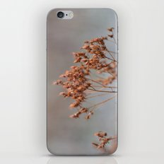 Frosty Days iPhone & iPod Skin