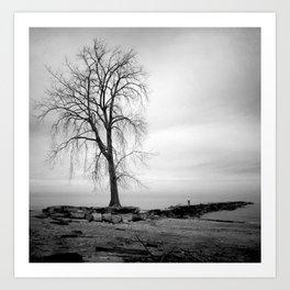 Beach Tree III Art Print