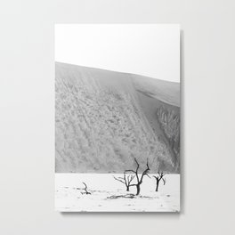 Deadvlei, Namibia at sunset | Art print, travel photography, landscape in black and white Metal Print
