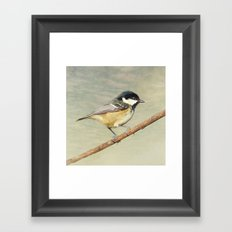 Coal Tit Framed Art Print