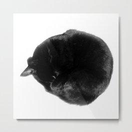 Catball Metal Print
