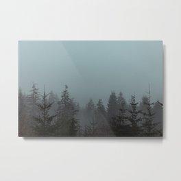Pacific Trees Metal Print