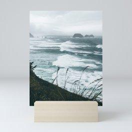 Oregon Coast XIV Mini Art Print