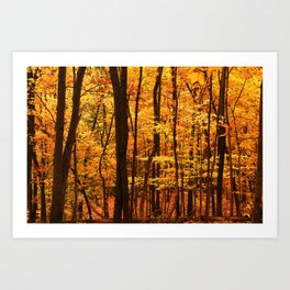 Delicious Autumn Art Print