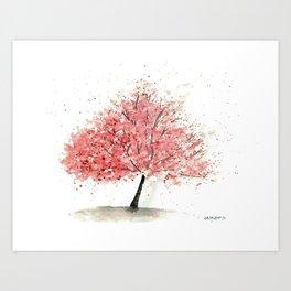 Kwanzan Cherry Tree Art Print