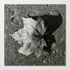 'Maple Leaf' Canvas Print