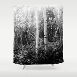 The Aspen Grove, No. 2 Shower Curtain