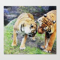 tigers Canvas Prints featuring Tigers by Irene Jaramillo