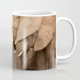 Herd of elephants in Addo Elephant National Park, South Africa Coffee Mug