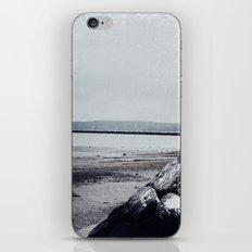 Winter Shore iPhone & iPod Skin