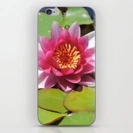 Water Lily at the Mission San Juan Capistrano iPhone Skin