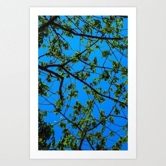 blue and green Art Print