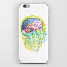 Anatomy Skull iPhone & iPod Skin