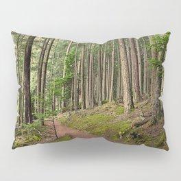 GOLDEN LIGHT IN THE FOREST Pillow Sham