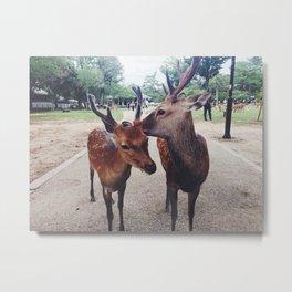 Kiss me, deer Metal Print