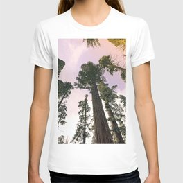 Redwood Portal II T-shirt