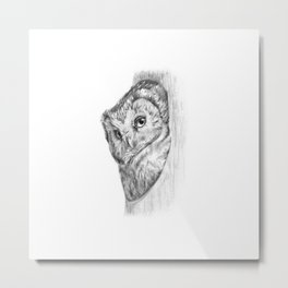 The Boreal Owl Metal Print